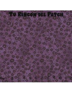 Focus: (15) Violáceo