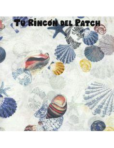Nautic: Conchas