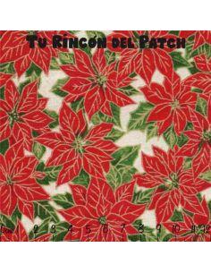Season's Greeting: Flor pascua paqueña
