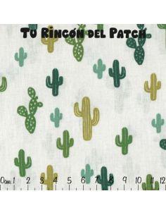 Cactus Arioca