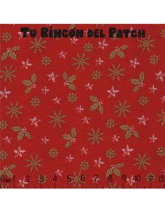 Noel: estrellas y hojas en rojo