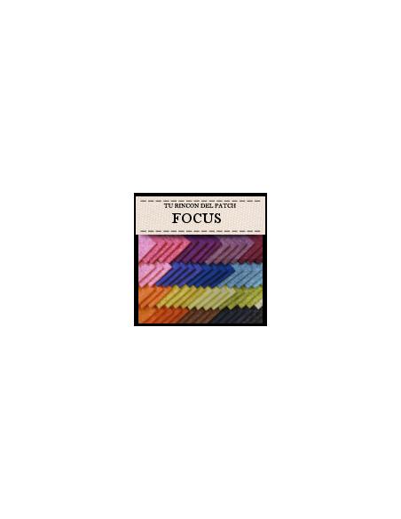 Focus (11€)